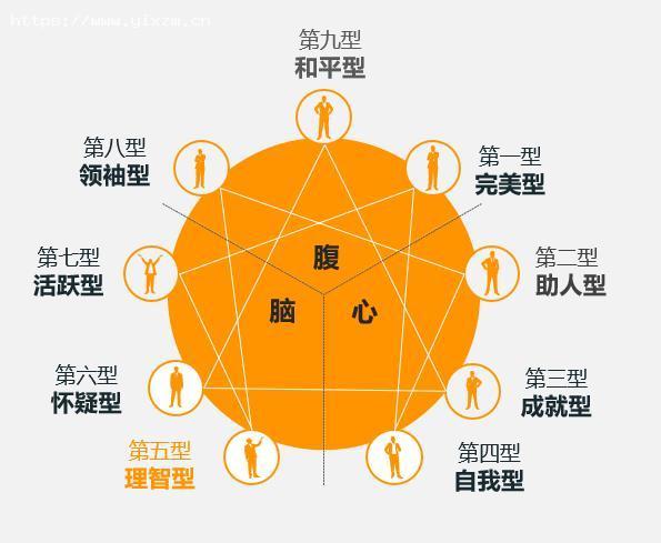 第五型理智型